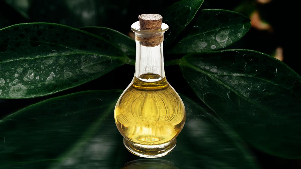 Óleo mineral x óleo vegetal: qual o melhor?